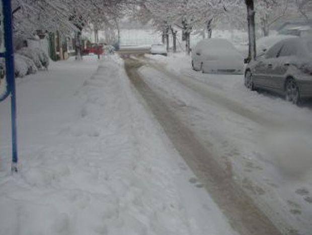 - пътят Варна - Добрич ;- пътят Варна - с.