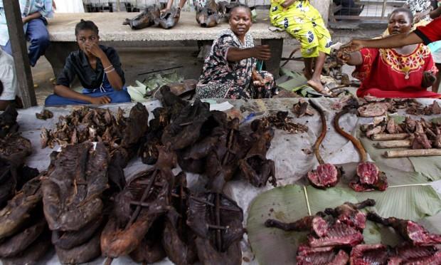 PASA> Пушени маймуни на пазар в КонгоДиво, вкусно и пълно