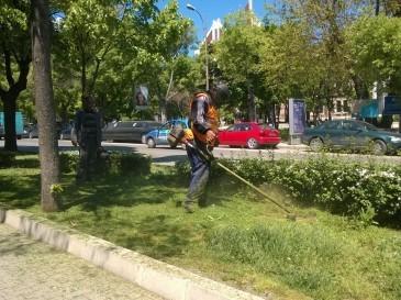 >До края на месец май ще бъдат обработени тревните площи
