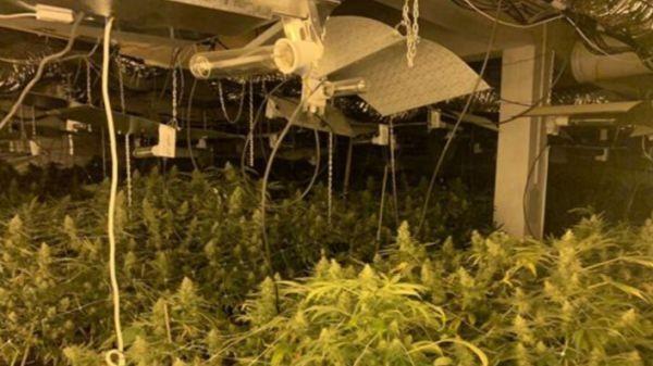 МВР Високотехнологична лаборатория за производство на марихуана е разкрита днес при