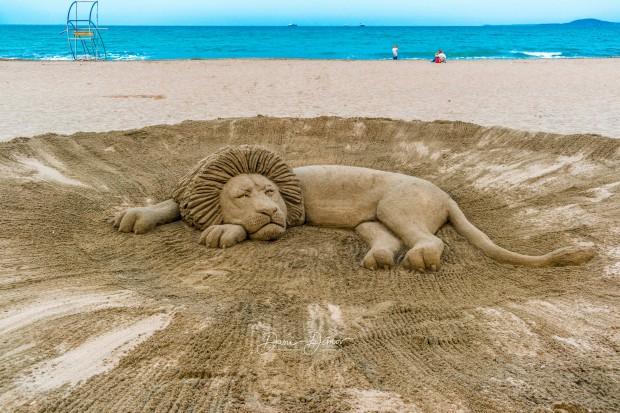 В социалната мрежа Фейсбук бе публикувана уникална снимка от плажа