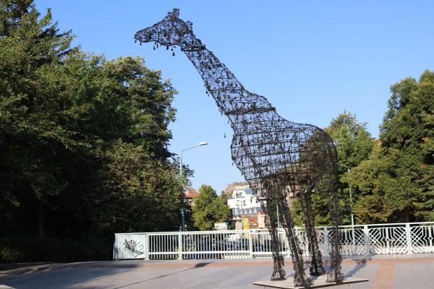 Интересна арт инсталация се появи в центъра на Пловдив, предаде
