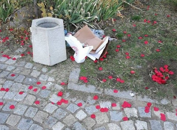 Снимка: Известен пловдивски адвокат с романтично предложение за брак, но...