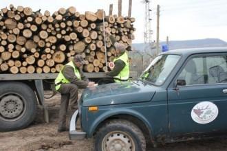 >Три каруци и 1,5 куб. м незаконно добити дърва за