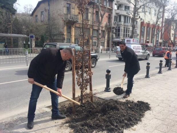 """Много работа по парковата среда планира кметът на район """"Централен"""""""