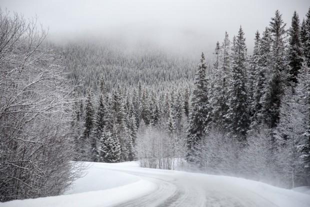През нощта се очаква снеговалеж и понижение на температурите. Прогнозата