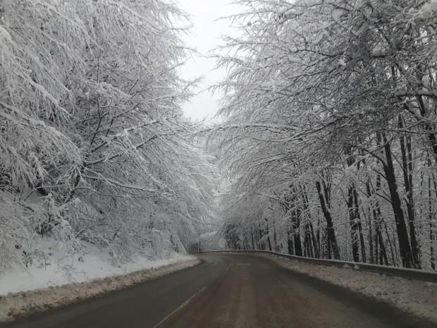 През следващата седмица се очакват снеговалежи и силен вятър. Влошаването