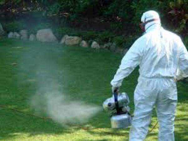 През тази седмица започна обработката срещу ларви на комари по