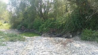 Баба се е удавила в отводнителен канал в монтанското село