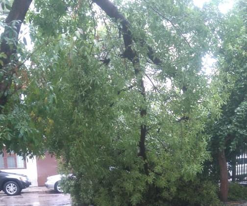 Ураганният вятър и поройният дъжд, които се изляха над Бургас