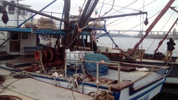 Служителите на Изпълнителната агенция по рибарство и аквакултури (ИАРА) вече