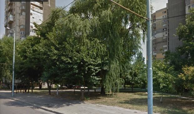 Пловдивчани търсят как да защитят зелено междублоково пространство. Става дума
