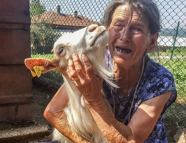 Снимка на баба, която държи коза и плаче в истинска