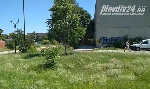 За трагичен инцидент в Мебелна къща на Асеновградско шосе научи