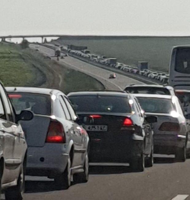 Фейсбук Доста пловдивски коли са се озовали в капана на АМ