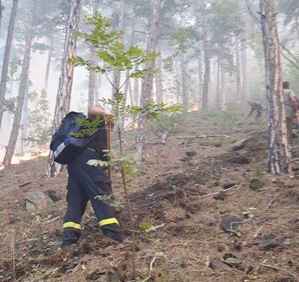Пожарът, който бушува от снощи над Карлово, е овладян и