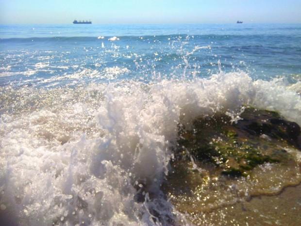 В средата на август в Черно море се появява голяма
