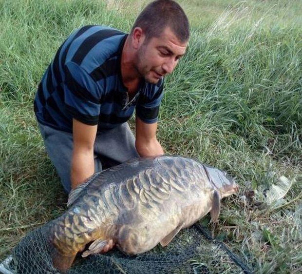 Гигантски 32-килограмов шаран бе уловен на езеро край София. Уникалното