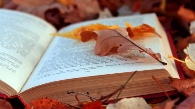 През последните няколко години есента се превърна в литературния сезон