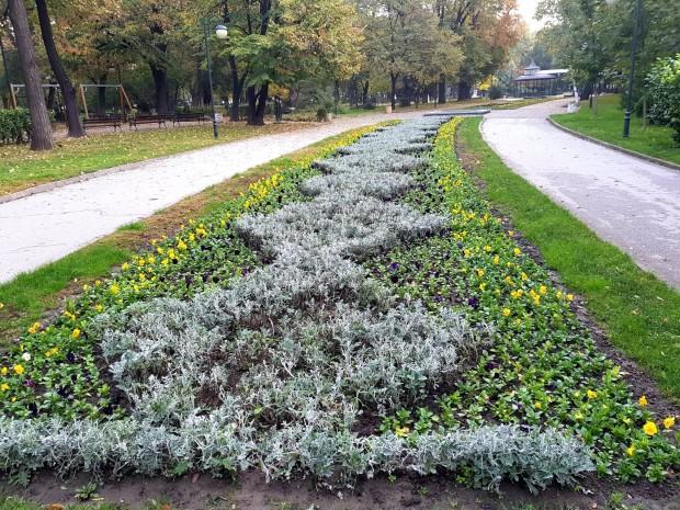 Със 150000 стръка различни видове цветя служители на ОП