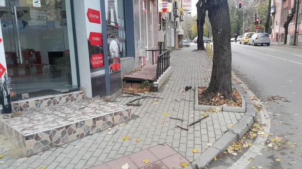 Varna24.bg Читател на Varna24.bg сигнализира, че неокастрени сухи клони хвърчат