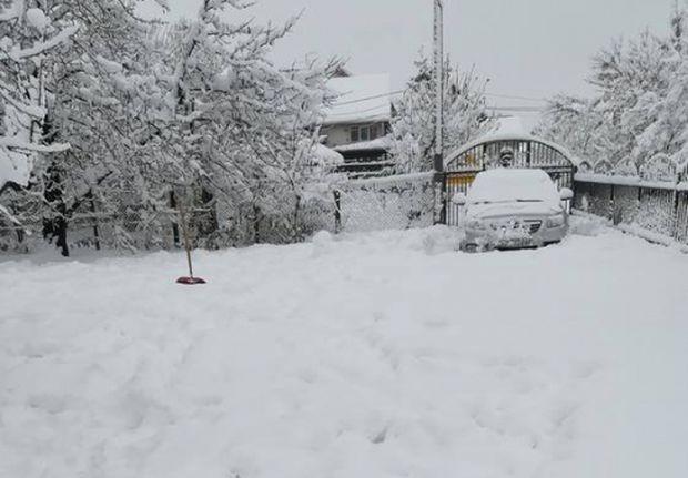 виж галерията Студ и сняг сковаха Европа. В Сърбия валя цяло