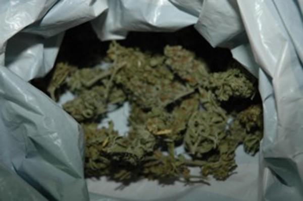 Намерени и иззети са торба със зелена суха тревна маса