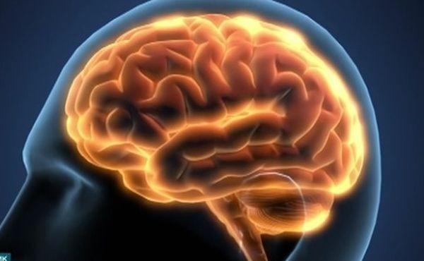 Ученическа иновация в помощ на лечението на Алцхаймер. На конференция