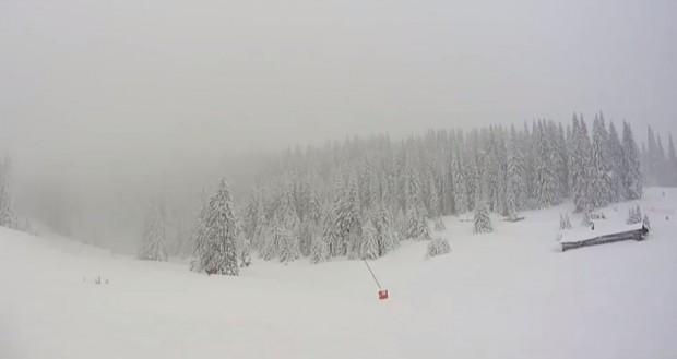Добри са условията за зимни спортове и туризъм в Пампорово,