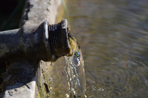 Варна ще внесе искане за стопанисване на водоизточниците с минерална