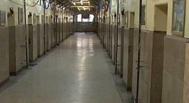 Снимка: Затворник поиска 50000 лева заради съжителство с мишки, хлебарки и дървеници