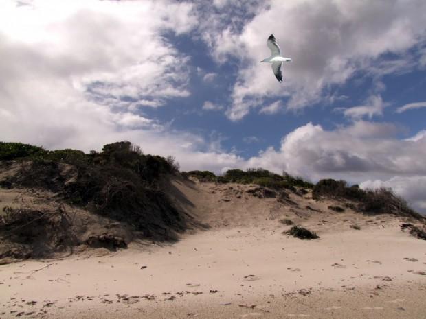 Снимка: Вижте за какво ще наказват на плажа в променения закон за крайбрежието