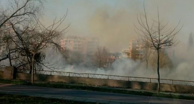 Снимка: Голям пожар в коритото на Марица в Пловдив!