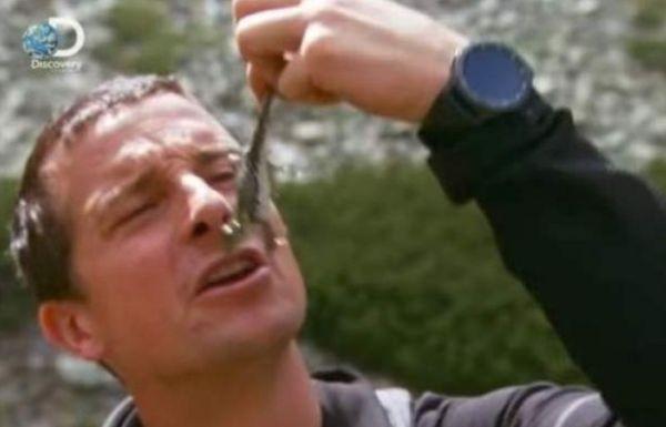 Снимка: Изядените от английския сървайвър Бейър Грилс жаби взривиха мрежата от коментари и народно творчество