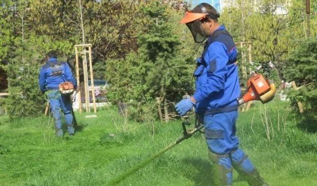 Снимка: Започна косенето на тревните площи във