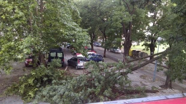 Бури с поройни дъждове, гръмотевици и ураганен вятър преминаха над