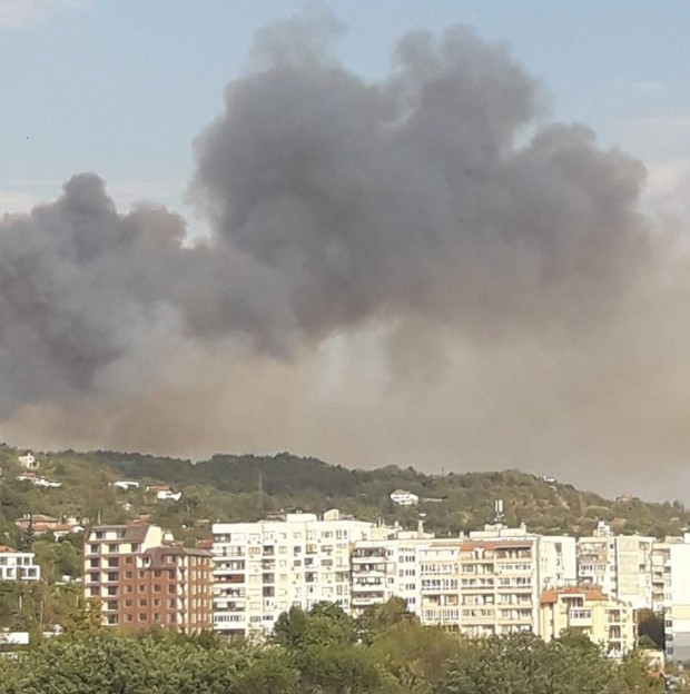 ФейсбукПожар в сухи треви във варненското село Каменар вдигна на