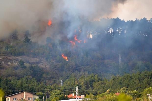 ФейсбукНад 60 пожарникари, повече от 20 доброволци и служители на