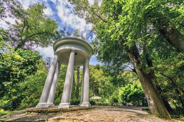 Дърветата в Морската градина на Варна ще бъдат внимателно обследвани
