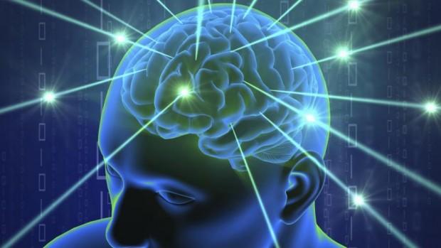 Учените често с право определят човешкия мозък като най-сложната позната