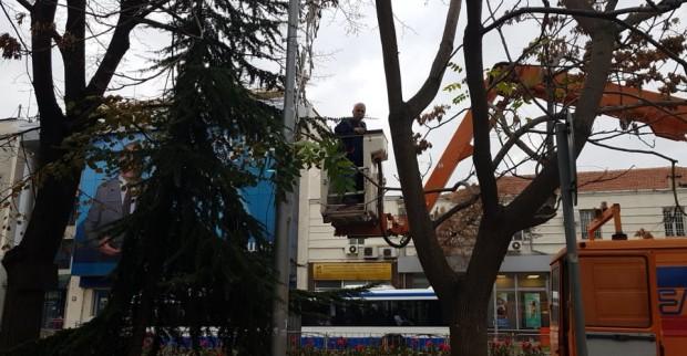 Varna24.bg Работници започнаха разкрасяването на Варна за предстоящите Коледни и