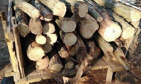 Три каруци натоварени с три пространствени кубически метра дърва за