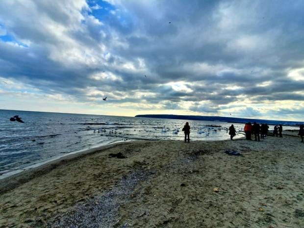 Според съобщението от институцията, са определени концесионери на морските плажове