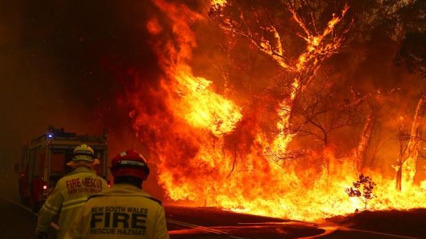 Последните горски пожари в Австралия са освободили много повече въглероден