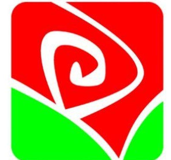 Младежкото обединение на социалистите във Варна е с нов председател.