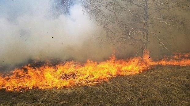 По въздух и земя гасят огромния пожар, който бушува край
